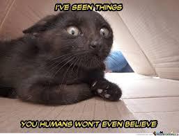 He's Terrified by carcarias - Meme Center via Relatably.com
