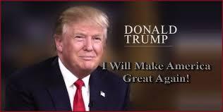 Image result for make america great again trump