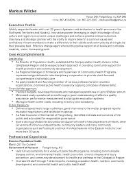 professional director population health templates to showcase your resume templates director population health