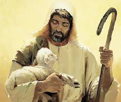 Image result for PEQUENO REBANHO DE JESUS