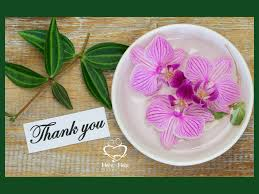 life application of the writing process webbinghere to help learning thank you we want to thank all of you for praying for us the island of the blue dolphins study guide filmed instruction is at the printer