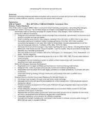 resume template example of a summary for university career 79 surprising examples of professional resumes resume template
