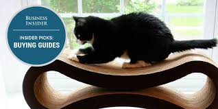 The best <b>cat beds</b> you can buy - Business Insider