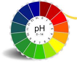 Resultat d'imatges de pH