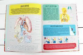 «<b>Детский иллюстрированный</b> атлас анатомии человека ...