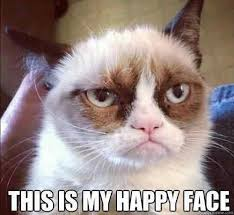 Grumpy cat's happy face when he learned how to do Facebook customized tabs (it's not very happy looking)
