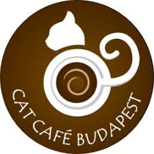 <b>Cat</b> Café Budapest – The PURRfect Place To be