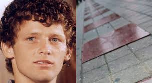 More than 33 years after he embarked on his Marathon of Hope, Canadian hero Terry Fox is being inducted into Canada's Walk of Fame. - terry-fox-walk-of-fame-feature