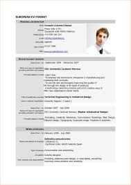 examples of resumes 8 cv format example verification 8 cv format example verification letters pdf in 87 glamorous cv format example