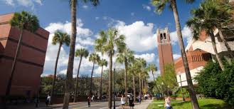 sample university of florida application essays mfacourses730 sample university of florida application essays