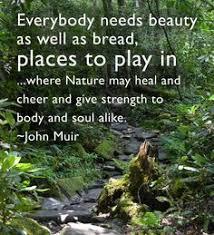 Quotes from John Muir on Pinterest | John Muir Quotes, John Muir ... via Relatably.com