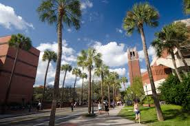 the best ph d programs in clinical psychology best 46 university of florida