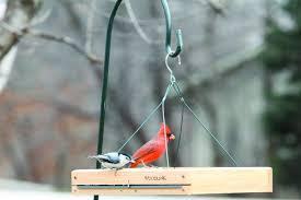 sky cafe wild bird feeder plataamz bird feeder  middot view larger