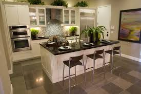 Small Picture Small Kitchen With Island Design Ideas Entrancing Design