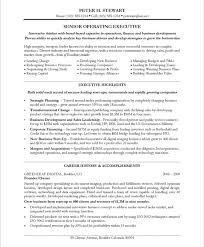 Chief Executive Officer Large Real Estate Project Resume Samples Resume Prime