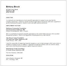 volunteer resume example   free templates collectionvolunteer resume example