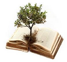 Imagini pentru book tree