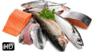Resultado de imagen de fotos pescado