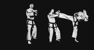 Kỹ thuật Taekwondo: Đừng coi thường thế đỡ căn bản kỹ thuật taekwondo: Đừng coi thường thế đỡ căn bản Kỹ thuật Taekwondo: Đừng coi thường thế đỡ căn bản images q tbn ANd9GcTYhYaRuryD FkIao6KXbJZxWsmHNMrkyUcwEpNsCLI3VSUykS4WA