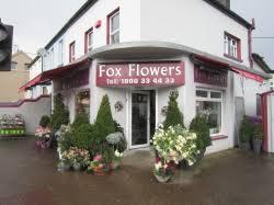 <b>Fox Flowers</b> - BALLYCURREEN - 106 reviews