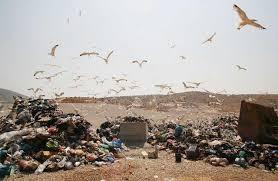 Αποτέλεσμα εικόνας για παιχνίδι της εξουσίας και στην διαχείριση των σκουπιδιών