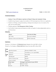 resume template how to google docs into word documents resume template resume template microsoft word 2010 resume template in ms word 2010 templates
