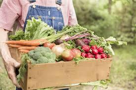 environmental benefits of organic farming