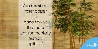 Are <b>bamboo</b> toilet paper and hand towels the more <b>environmentally</b> ...