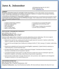 Insurance Underwriter Resume Job
