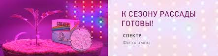 <b>Садовые измельчители</b> для травы и веток купить в Москве: цены ...