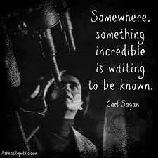 Image result for sagan somewhere something