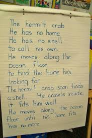 HOUSE FOR HERMIT CRAB LESSON PLANS   TRADITIONAL HOME PLANSA House for Hermit Crab by Eric Carle   Scholastic com