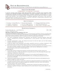 resume examples for executives cipanewsletter cover letter resume templates for executives professional resume