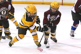 Image result for ice hockey athletes at U10