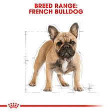 Buy <b>Royal Canin French Bulldog</b> Adult Dry Dog Food Online   Low ...