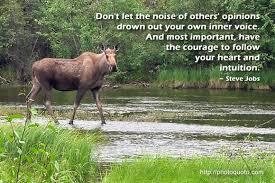 Famous quotes about 'Moose' - QuotationOf . COM via Relatably.com