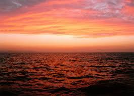Risultati immagini per foto mare rosso