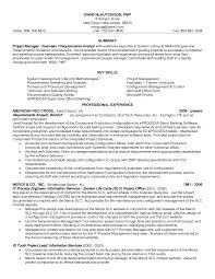 professional summary for a resume resume badak professional banking resume