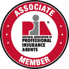 Image result for professional insurance agent logo