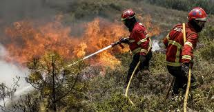 Todo-o-terreno em Vimioso cancelado devido a alerta para incêndios