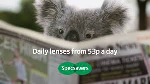 specsavers koala the inspiration room specsavers koala