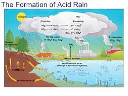 acid rain tasks