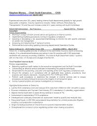 internal audit resume cover letter equations solver cover letter chief audit executive