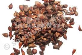 Seva Aushadhi.com - Bee%2520dana(Pyrus%2520cydonia%2520)