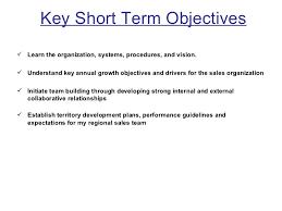 days plan to meet goals for new organization  3 key short term objectives