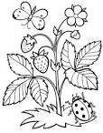Раскраски для детей 3-4 цветы
