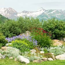 Small Picture Rock Garden Design Ideas