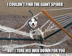 i couldn't find the giant spider... - Meme Generator Captionator via Relatably.com