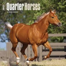 domestic animals page calendar club of quarter horses 2017 wall calendar