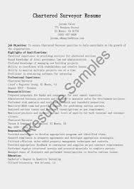 auto underwriter resume surveyor resume resume for surveyors s surveyor lewesmr